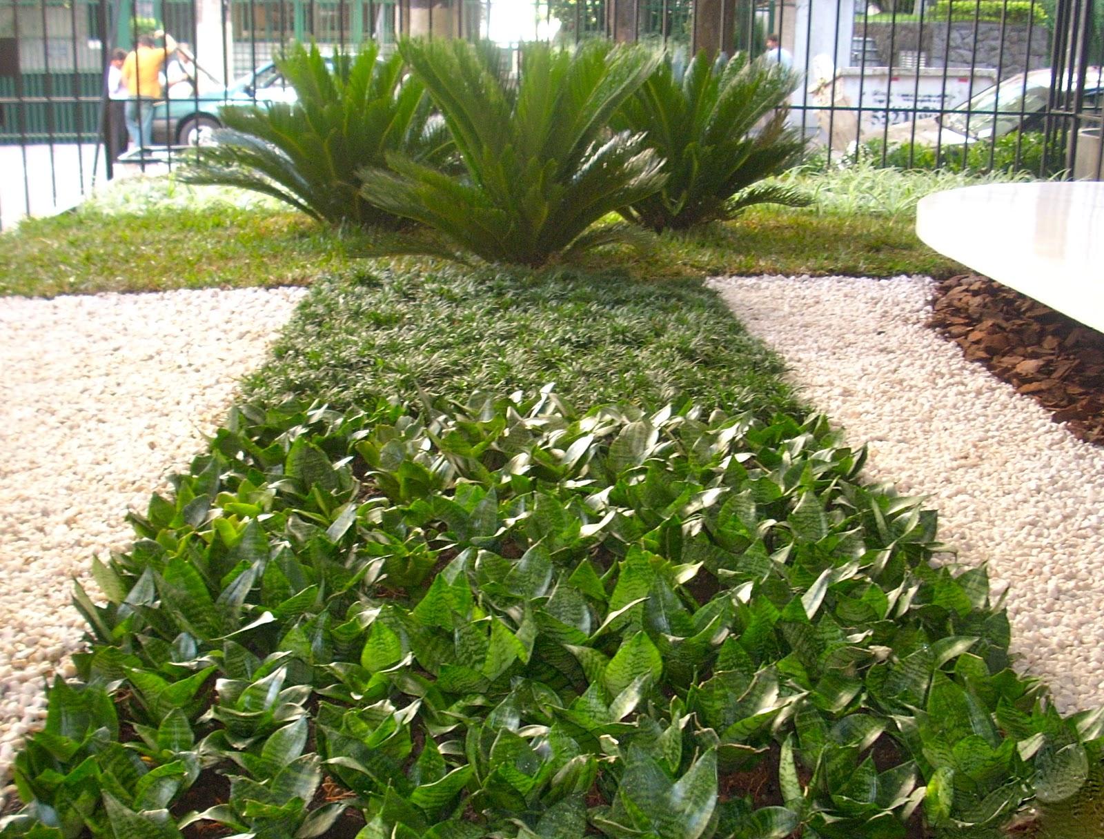 Diferen as entre paisagismo e jardinagem siagutatemp for Paisagismo e jardinagem